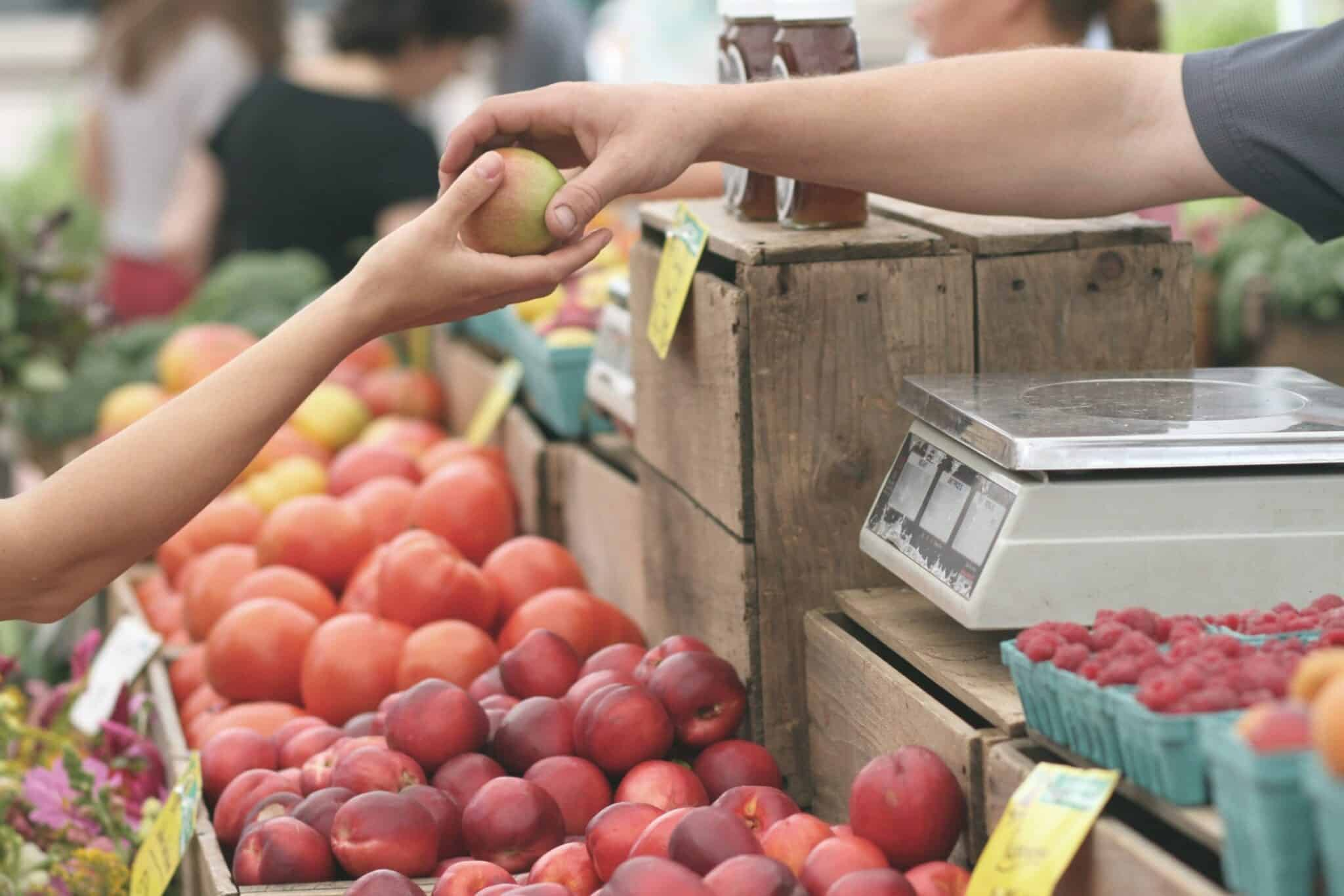 Customer Avatars Will Increase Your ROI apples